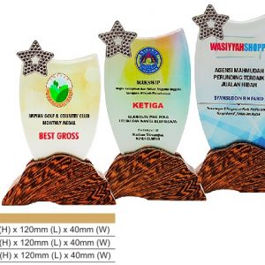 Crystal Plaques CR8321 – Star Color Crystal Award