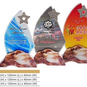 Crystal Plaques CR8323 – Star Color Crystal Award