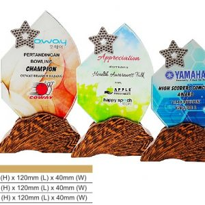 Crystal Plaques CR8324 – Star Color Crystal Award