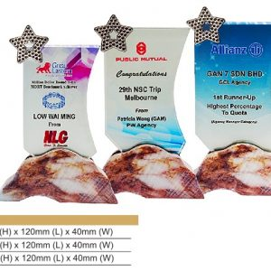 Crystal Plaques CR8325 – Star Color Crystal Award