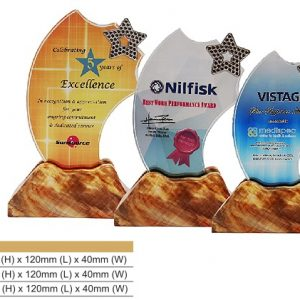 Crystal Plaques CR8326 – Star Color Crystal Award