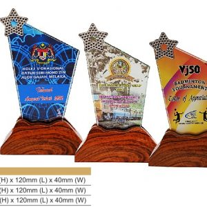 Crystal Plaques CR8328 – Star Color Crystal Award