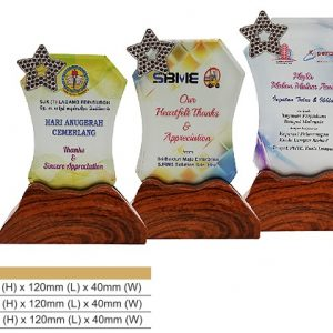 Crystal Plaques CR8329 – Star Color Crystal Award