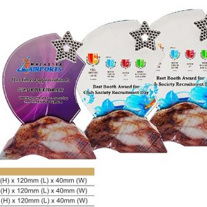 Crystal Plaques CR8331 – Star Color Crystal Award