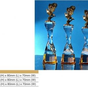 Crystal Trophies CR8333 – Eagle Color Crystal Award