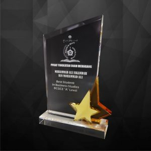Crystal Plaques CR9116 – Exclusive Crystal Star Award