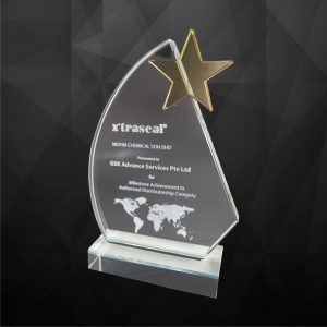Crystal Plaques CR9125 – Exclusive Crystal Star Award