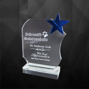 Crystal Plaques CR9129 – Exclusive Crystal Star Award