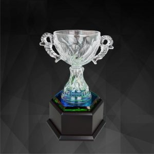 Crystal Trophies CR9133 – Exclusive Crystal Bowl Trophy