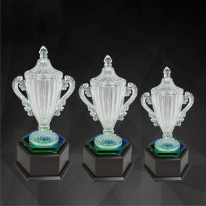 Crystal Trophies CR9135 – Exclusive Crystal Trophy