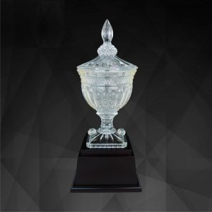 Crystal Trophies CR9136 – Exclusive Crystal Trophy