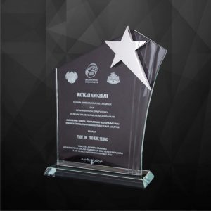Crystal Plaques CR9167 – Exclusive Crystal Star Plaques