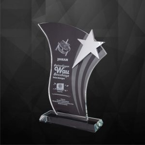 Crystal Plaques CR9169 – Exclusive Crystal Star Plaques