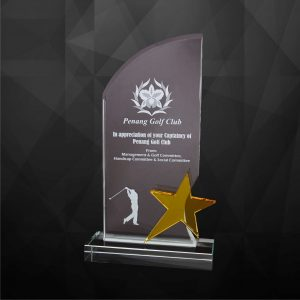 Crystal Plaques CR9227 – Exclusive Crystal Star Plaques
