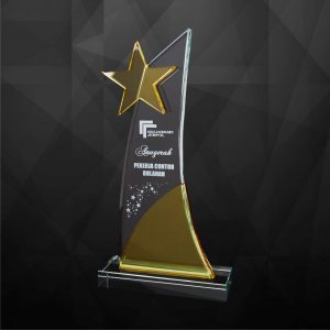 Crystal Plaques CR9228 – Exclusive Crystal Star Plaques