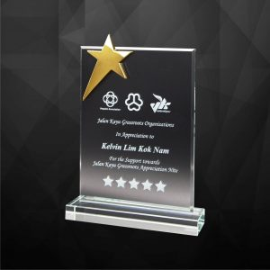 Crystal Plaques CR9253 – Exclusive Crystal Star Plaques