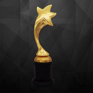 Sculpture Trophies CR9273 – Exclusive Sculptures Awards (Star)