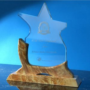 Crystal Plaques CR9304 – Exclusive Star Crystal Awards