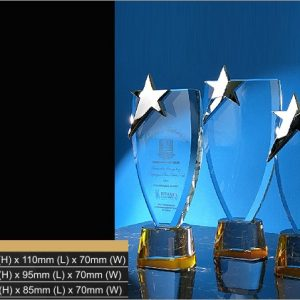 Crystal Trophies CR9315 – Exclusive Star Crystal Trophy