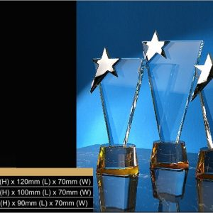 Crystal Trophies CR9316 – Exclusive Star Crystal Trophy