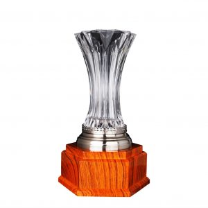 Crystal Trophies CR9334 – Exclusive Crystal Vase Trophy