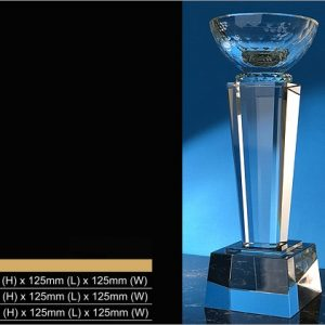 Crystal Trophies CR9340 – Exclusive Crystal Bowl Trophy