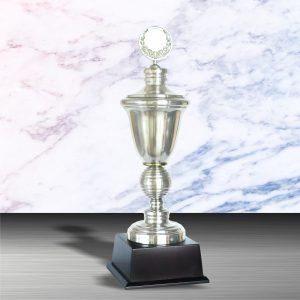 Silver Trophies EXWS6003 – Exclusive White Silver Trophy