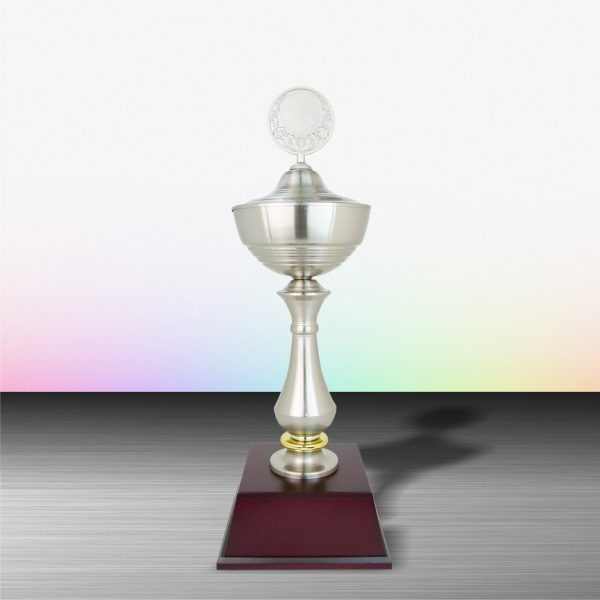 Silver Trophies EXWS6005 – Exclusive White Silver Trophy