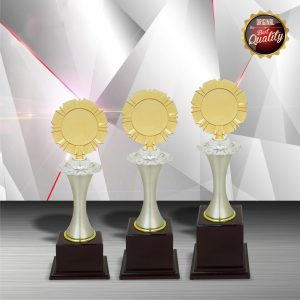 Silver Trophies EXWS6008 – Exclusive White Silver Trophy