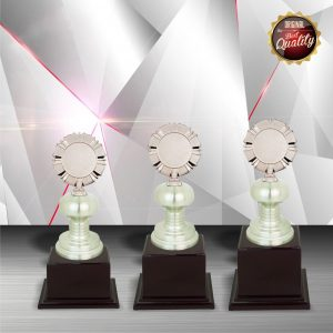 Silver Trophies EXWS6011 – Exclusive White Silver Trophy