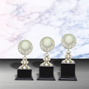 Silver Trophies EXWS6025 – Exclusive White Silver Trophy