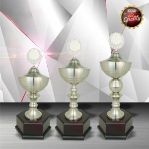Silver Trophies EXWS6028 – Exclusive White Silver Trophy