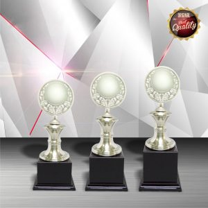 Silver Trophies EXWS6029 – Exclusive White Silver Trophy