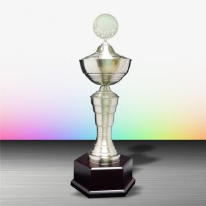 Silver Trophies EXWS6039 – Exclusive White Silver Trophy