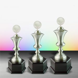 Silver Trophies EXWS6043 – Exclusive White Silver Trophy