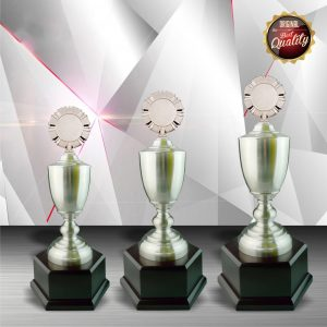 Silver Trophies EXWS6044 – Exclusive White Silver Trophy