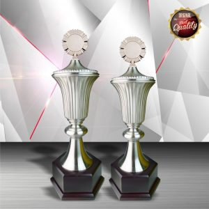 Silver Trophies EXWS6045 – Exclusive White Silver Trophy