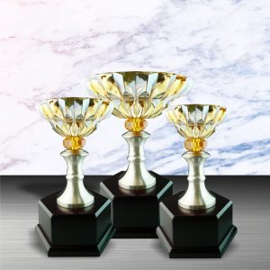 Silver Trophies EXWS6046 – Exclusive White Silver Trophy With Crystal Bowl