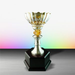 Silver Trophies EXWS6047 – Exclusive White Silver Trophy With Crystal Bowl