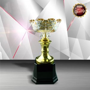 Silver Trophies EXWS6048 – Exclusive White Silver Trophy With Crystal Bowl