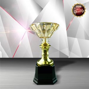 Silver Trophies EXWS6050 – Exclusive White Silver Trophy With Crystal Bowl