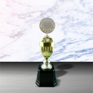 Silver Trophies EXWS6053 – Exclusive White Silver Trophy