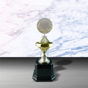 Silver Trophies EXWS6054 – Exclusive White Silver Trophy