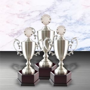 Silver Trophies EXWS6058 – Exclusive White Silver Trophy