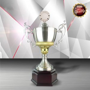 Silver Trophies EXWS6061 – Exclusive White Silver Trophy