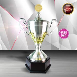 Silver Trophies EXWS6062 – Exclusive White Silver Trophy