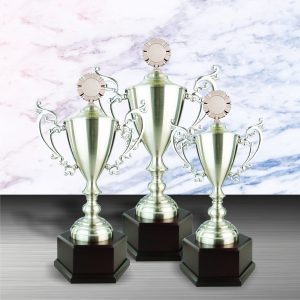Silver Trophies EXWS6064 – Exclusive White Silver Trophy