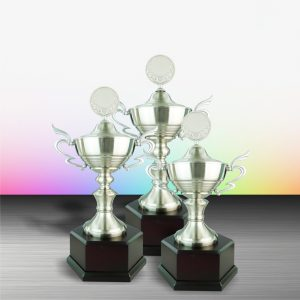 Silver Trophies EXWS6065 – Exclusive White Silver Trophy