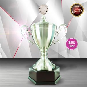 Silver Trophies EXWS6066 – Exclusive White Silver Trophy