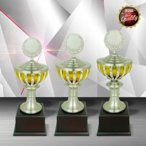 Silver Trophies EXWS6074 – Exclusive White Silver Trophy